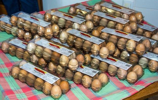 Dentre as empresas com o SIM, está uma granja produtora de ovos coloniais