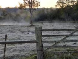 FOTOS: Quarta-feira amanhece com temperatura próxima a 0ºC em Santa Cruz e região
