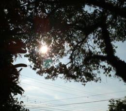 Semana deve ser marcada por altas temperaturas em Santa Cruz e região
